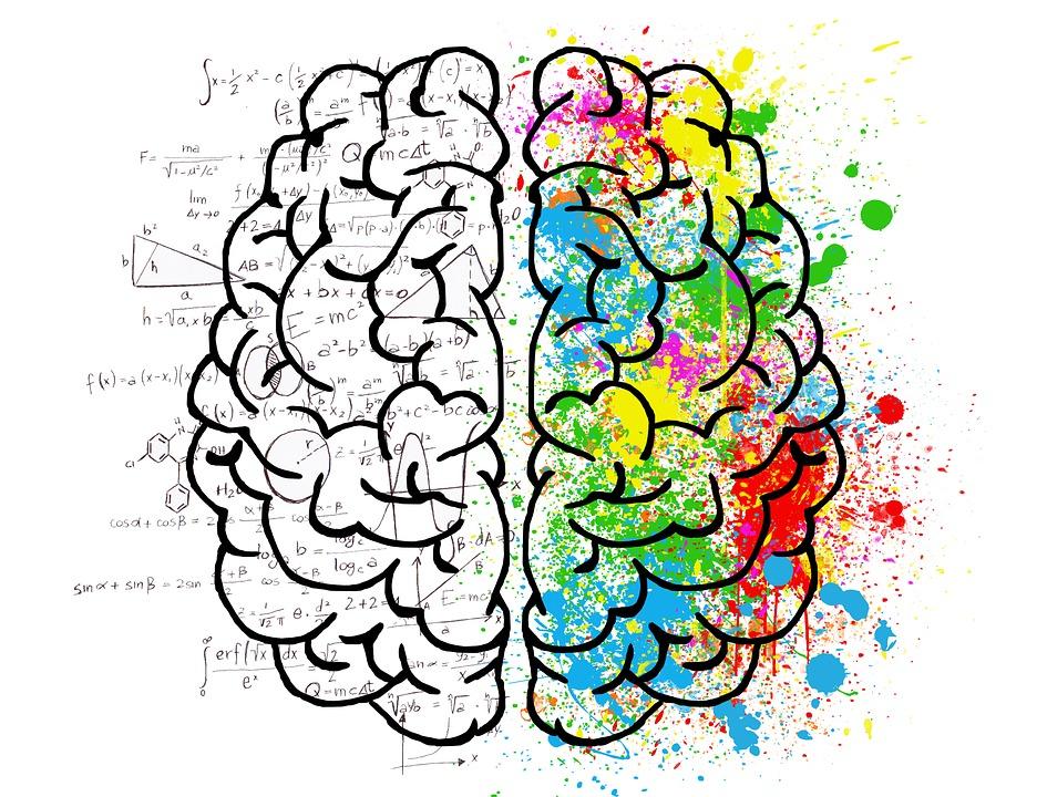 funciona-sistema-recompensa-cerebro