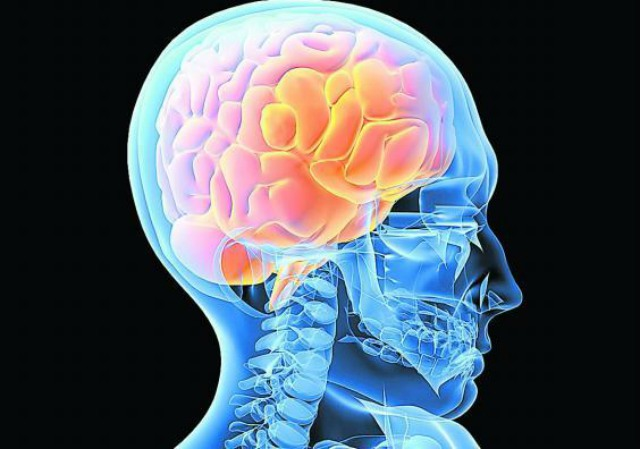 El cerebro puede sentir dolor