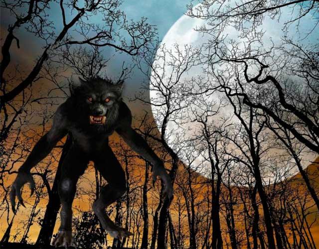 datos curiosos sobre el hombre lobo