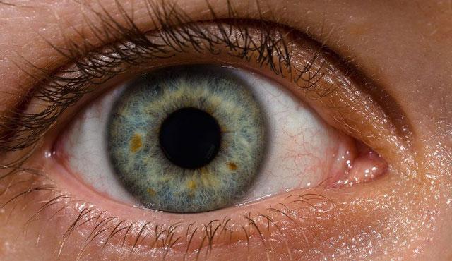 Cómo funciona el ojo