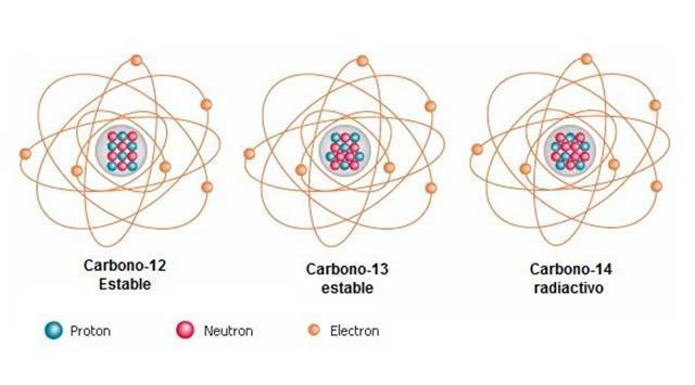 Cómo funciona el carbono 14