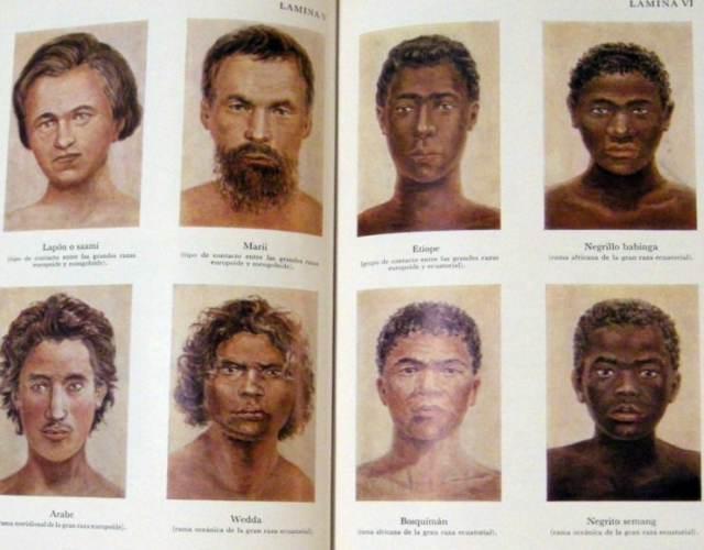Existen las razas humanas