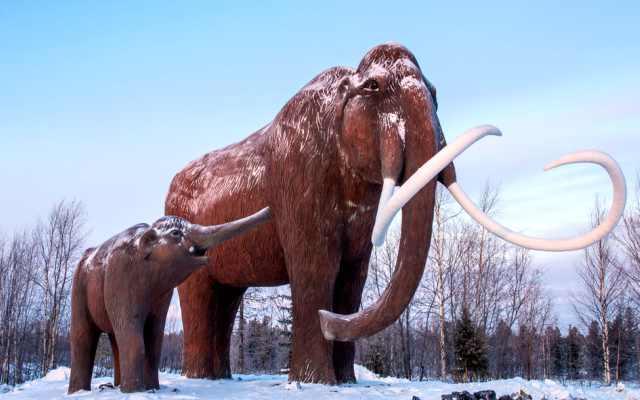 La extinción del mamut lanudo