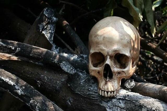 Trato de cadáveres durante la historia