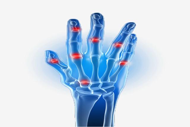 partes de las manos