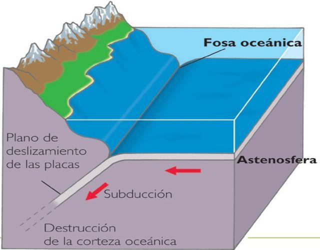 las fosas oceánicas