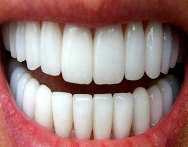 Cuál es la función de los dientes