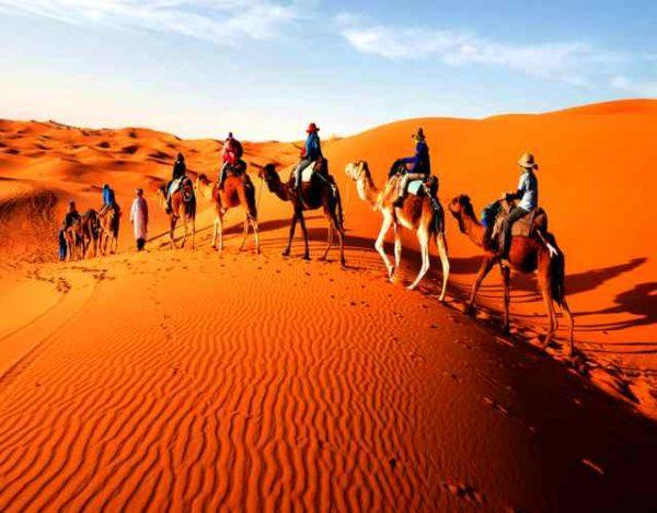 Curiosidades sobre el desierto del Sahara