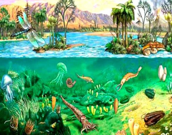 La era paleozoica o era primaria