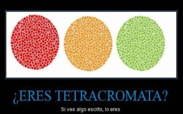 Tetracromatismo, ver más colores