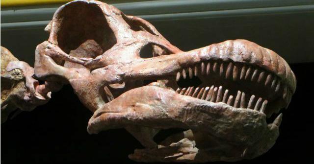 dinosaurio más grande