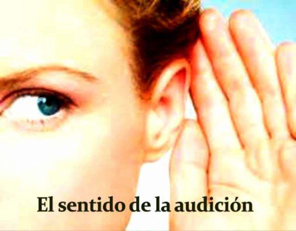 Así funciona el sentido de la audición