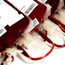 Se pueden hacer transfusiones entre especies