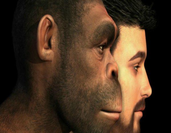 antepasado más antiguo descubierto