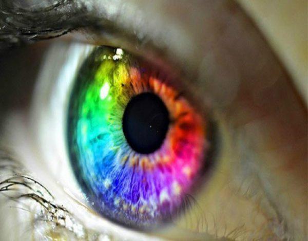 curiosidades sobre el daltonismo