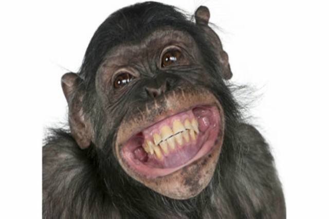 Fórmula científica para hacer reír