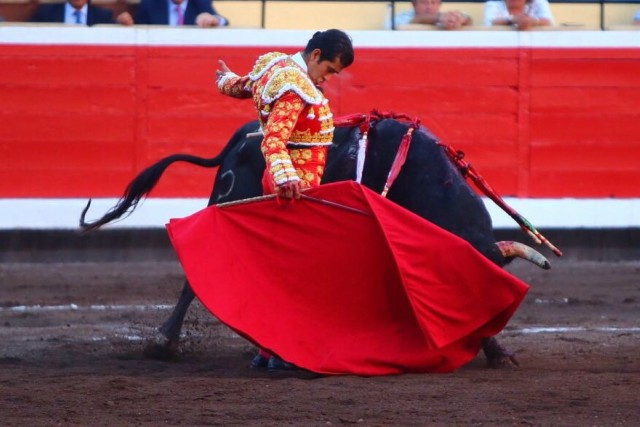 por qué los toros van al color rojo