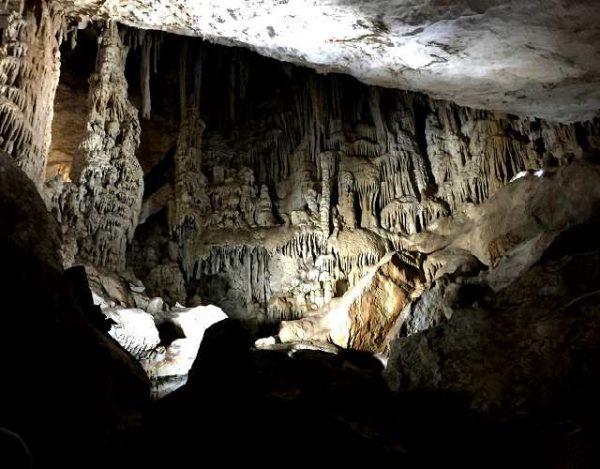 Cómo son las cuevas de murciélagos