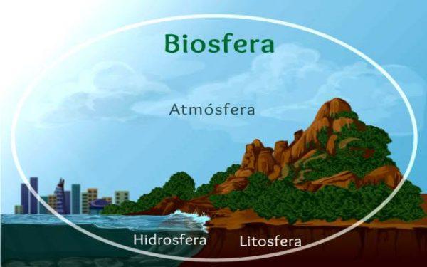 Qué es la biosfera