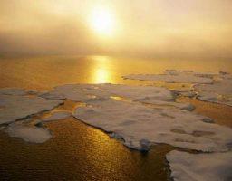 Consecuencias del aumento de temperatura de los océanos