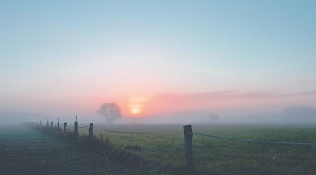 ¿Por qué se forma la niebla?