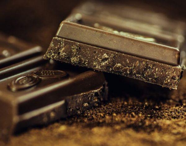 chocolate es malo para los animales