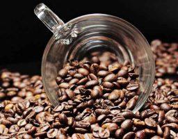 placer por el café