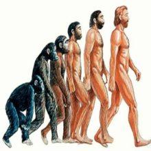 Por qué buscamos a nuestros antepasados
