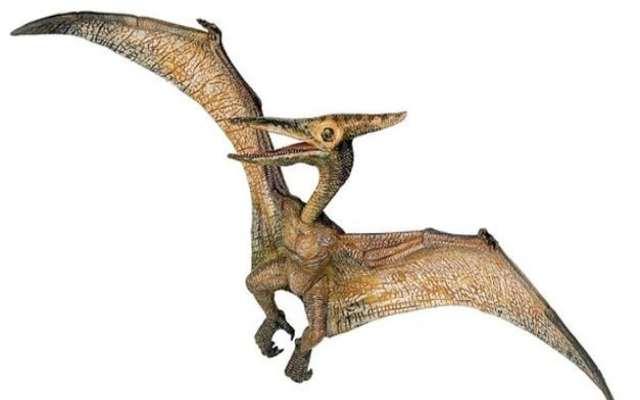 Dinosaurios voladores