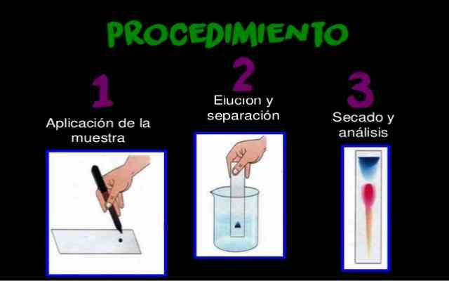 Experimento Cromatografía en papel