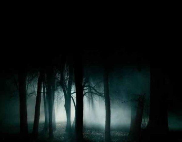 Por qué tenemos miedo a la oscuridad