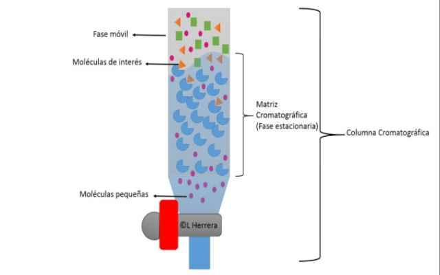 Qué es la Cromatografía y tipos