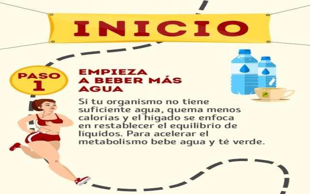 Maniquíes aproximadamente esquema del metabolismo