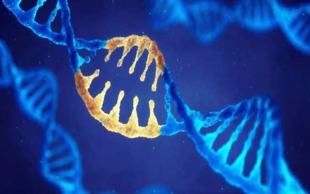 Descubrimos cuáles son los genes que se heredan de papá y cuáles de mamá