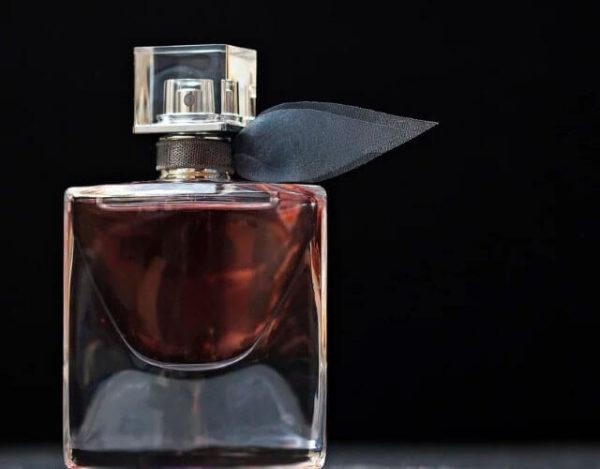 perfumes favoritso de las famosas