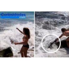 Ve un tiburón en el mar y se sumerge sin protección. Lo agarra con sus propias manos para sacarlo
