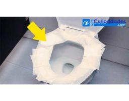 Médicos Advierten: Esta Es La Razón Por Que No Debes Poner Papel Higiénico Sobre El Inodoro