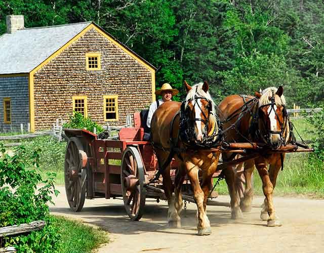 Breve historia del coche de caballos